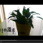 [MV] 雙手的溫柔 –江美琪